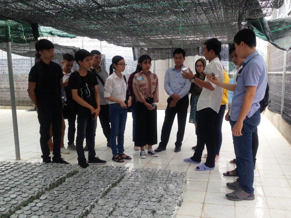 Sinh viên tham quan nhà lưới huấn luyện cây mầm nuôi cấy mô - Công ty Lâm nghiệp Tiền Phong